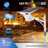 15W/20W/30W/40W/50W/60W/80W Solar Powered Motion Sensor Light LED Lighting Smart Street Lamp with Solar Panel
