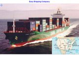 Consolidate Lowest Sea Freight From China to Us