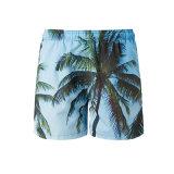 Island Style Beach Shorts for Summer Season