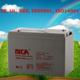 Gel Battery Deep Cycle Battery AGM Battery 6V 200ah