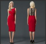 Latest Design Red Sexy Women Party Dress with Lace