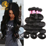 Raw Indian Virgin Hair Body Wave Aliexpress Indian Remy Wet and Wavy Human Hair Extensions Hair Weave 4 Bundles