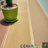 Garden Decorative Composite Outdoor Decking (TW-02B)
