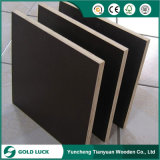 Black Film Faced Contruction Plywood for Middle East