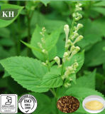 100% Natural Scutellaria Baicalensis Extract Baicalin