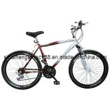 New Model Mountain Bicycle MTB-048
