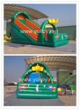 Inflatable Slide for Family Party Event