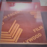 film Faced Plywood for Construction /Outside with Poplar Core