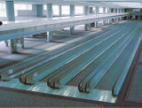 0 Degree Flat Moving Walkway for Airport (XNW-003)