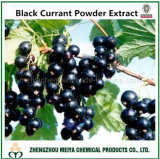 China Origin Natural Black Currant Powder Extract with Anthocyanidins