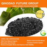 Soluble Humic Acid Fertilizer Powder