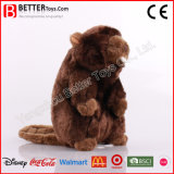 Gift Stuffed Animal Soft Beaver Plush Toy for Kids