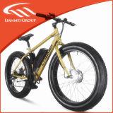 Nice Price Fat Electric Bike Lmtdf-27L with Ce