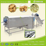 Lxtp-3000 Industrial Carrot Peeling Washing Machine, Commercial Automatic Potato Peeler