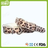 High Quality PU Photo Printed Dog Collar, Pet Collar