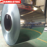 Polyester Coated Galvalume Coil for Construction Material