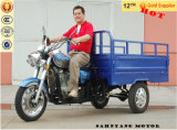 3 Wheel Motorcycle 300cc Cargo Three Wheel Motorcycle