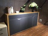 New Design High Qualitystorage Cabinet Bookcase (C6)