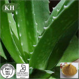 Professional Manufacturer Aloe Vera Extract Gel Freeze Dried Powder