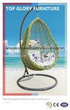 Wicker Furniture Handing Swing Rattan Chair (TGDL-051)