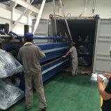 Sea Shipping From Shanghai to Qatar