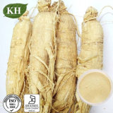 Low Pesticide Residues Ginseng Root Extract Ginsenosides 5%-80%