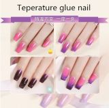 Temperature Variation Glue Nail No Smell Glossy UV/LED Gel Nail Polish Colour Gel