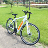 36V Mountain Electric Bike with Hidden Battery
