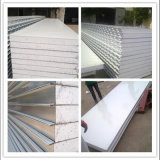 Good Heat Insulation Material EPS Sandwich Wall Panel with Low Price