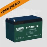 Lead Acid Battery (6-DZM-12)