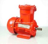 30kw~55kw Yb2 Series Explosion-Proof Electric Motor (YB2-250M)
