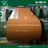 Building Material for PPGI Manufacturer