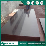 Construction Material Finger-Joint Core Film Face Plywood