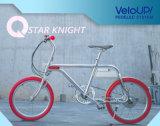 China The Best of The E-Bike Tsinova Ion
