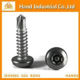 Pan Head Torx 30 Drilling Fasteners Screw