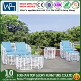PE Rattan with Aluminum Frame Garden Sofa for Outdoor Use (TG-009)