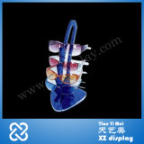 Acrylic Sunglasses Display Stand for Eyewear Display Holder
