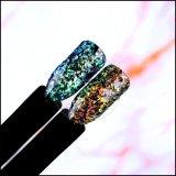 Chameleon Sequin Glitter Paillette/Flakes Nail Art