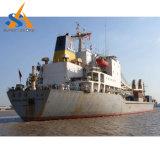 15000dwt Bulk Carrier Cargo Ship