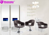 Styling Chair, Salon Chair, Barber Chair, Hairdressing Chair (Package NP1089)