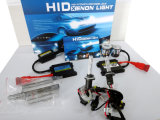AC 55W 881 HID Xenon Lamp HID Kit with Slim Ballast