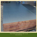 18mm Poplar Core Film Faced Plywood