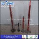 Intake/ Exhaust Valve for Russian Marine Engine