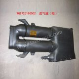 Cabin Air Inlet-Wg9725190002 for HOWO, Donfeng, FAW Truck