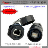 RJ45 CAT6 Connector/ RJ45 Connector Types for LED Screen and Lighting