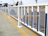 Enamel Wire Mesh Fence/ Enamel Villa Fence/ Enamel Road Barrie/ Wall Fence