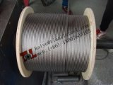 AISI 304 7*7 Stainless Steel Wire Rope