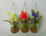 Beautiful Glass Jar Plants in Milk Bottle White Lily of The Valley