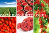 Dried Goji Berries From Zhongning, Ningxia