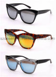 Wholesale High Quality Cat Eye Sunglasses for Lady